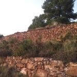 Les secrets des murs de pierre : <br> 5 règles pour des organisations efficaces